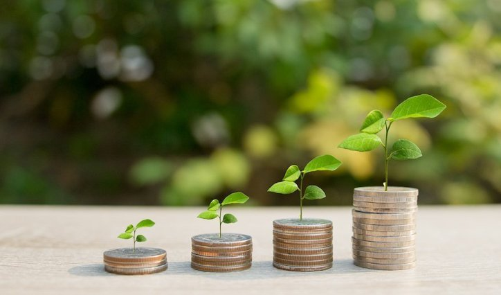 Stacks of coins and plants showing growth